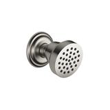 Body spray without volume control - platinum matte 28518360-06 Dornbracht